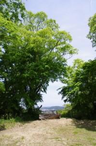 金剛座寺付近からの風景