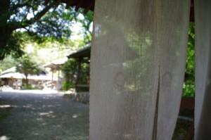 山門(金剛座寺)