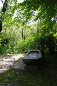 手水鉢(金剛座寺)