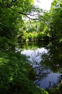 池(金剛座寺)