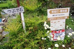 珍布峠ウォーキングコース・マップ (20)