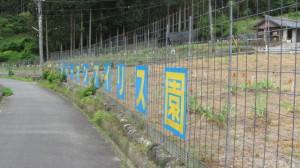 ジャーマンアイリス園(飯高町作滝)