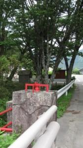 珍布峠ウォーキングコース・マップ (25)付近
