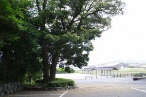 駐車場(伊雑宮)