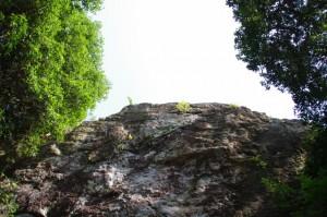 おうむ岩を見上げて