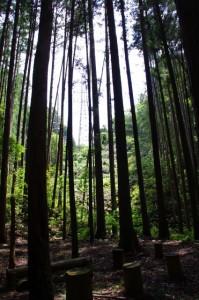 丹生水銀鉱跡前の風景