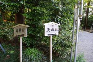 「御神殿」、「御神木 夫婦杉」の案内板(佐那神社)