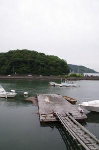 加茂川の対岸から望む赤崎神社の社叢