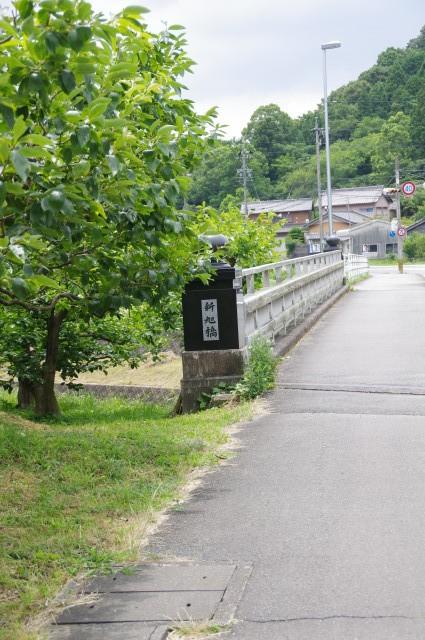 新旭橋(朝川)
