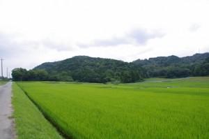土橋勇次郎翁彰功碑付近から川原神社へ