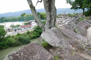 高石垣の上(伊賀上野城)