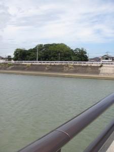 第二湊橋から望む志宝屋神社の社叢