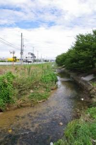 高取川(慈明寺橋付近)