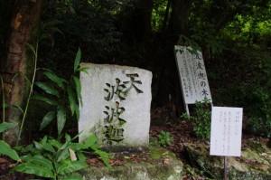 天波波迦の石と波波迦の木(天香山神社)