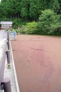 マップ(8985)の先の池