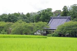 興福寺(マップ(8848)ポイント付近から)
