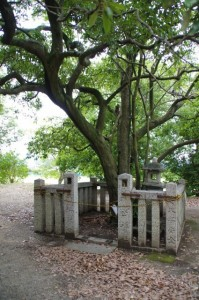 大極殿跡の鴨公神社(藤原宮跡)
