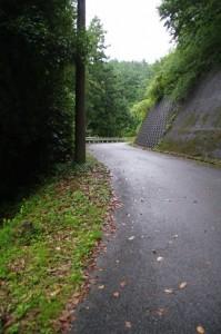 長谷の車田から近長谷寺への林道