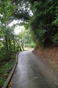 金剛座寺への参道