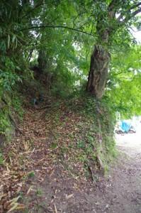 穴師神社跡への登り(金剛座寺の池付近)