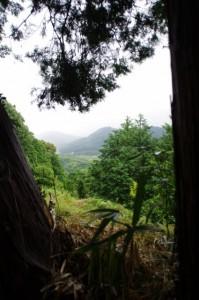 電波塔付近(神坂展望施設~近長谷寺)