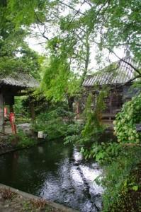 金剛座寺の池