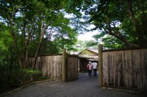 神宮茶室 一般公開