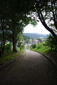 上田神社(伊勢市中村町)の参道からの眺め