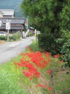 原公民館から幸神社へ