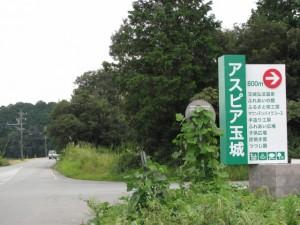 アスピア玉城の入口(原公民館から幸神社へ)