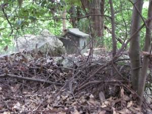 津布良神社付近の小さな祠