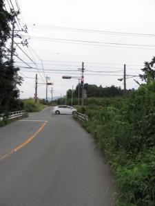 大池の北側の道路(度会郡玉城町)