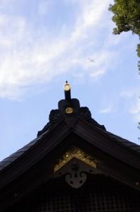 航空機と外宮神楽殿の屋根