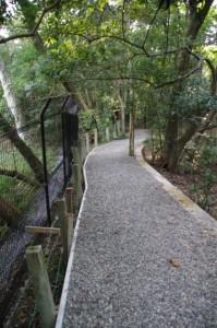 大津神社から上御井神社遥拝への参道
