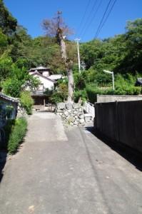 相橋付近から日和山へ