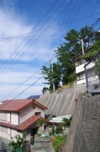 寺田さん宅と八代神社の社叢(神島)
