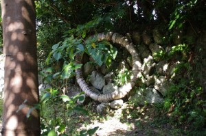 ゲーター祭で使われた「アワ」(八代神社、神島)