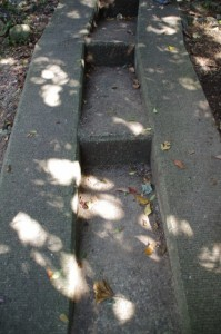 八代神社から神島灯台への上り坂(神島)