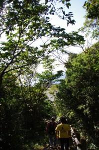監的哨からニワの浜への遊歩道(神島)