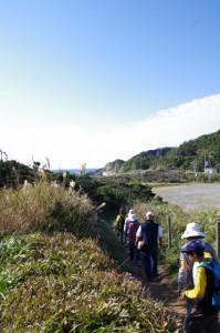 ニワの浜付近(神島)