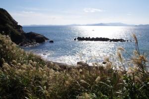 弁天岬の遠望(神島)