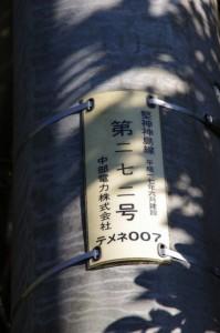 電柱 第272号(神島)