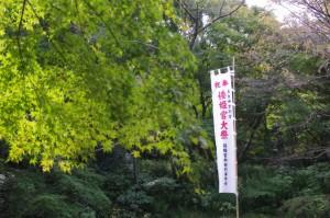神宮徴古館前から倭姫前交差点へ