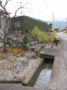 黒瀧神社付近の水路(松阪市飯高町森)