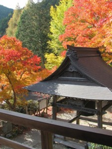 泰運寺、休憩所からの展望(松阪市飯高町波瀬)