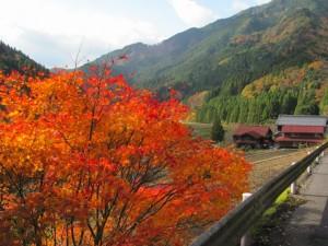 林道 飯高北奥線(終点)からの風景