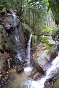 不動延命の滝