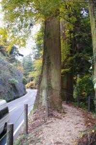 屋形橋から談山神社への散策道