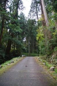(30)東大門~(15)摩尼輪塔(談山神社)