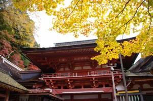 (10)楼門(談山神社)